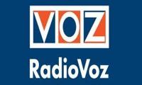 راديو افوز