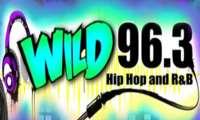 Wild 963 Radio