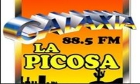 Galaxia La Picosa