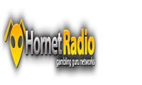 راديو الدبور