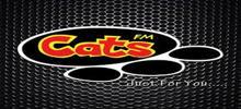 Gatos FM
