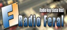 Radio DM Feral
