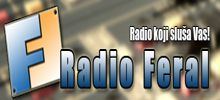 راديو DM فيرال