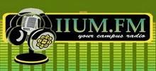 МНУМ FM-