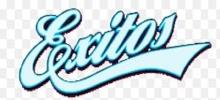 Exitos 99.9 FM