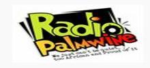 Radio Palmwine