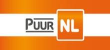Pure NL