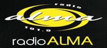 راديو ألما