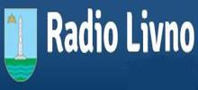 Радио Ливно