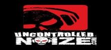 Unkontrollierte Noize