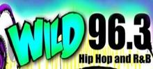 wild 96 Fm
