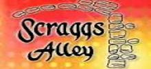 راديو Scraggs