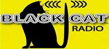 Black Cat-Radio