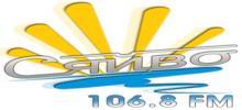 Syaivo FM