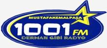 1001 FM
