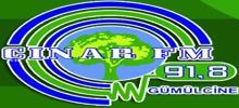 Чинар FM-