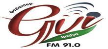 Gul Radyo