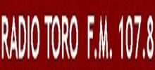 Radio Toro