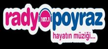 Радио Poyraz