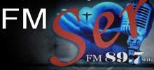 FM Ser
