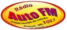Radio FM Auto
