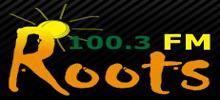 Rrënjët FM