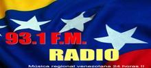 93.1 راديو FM