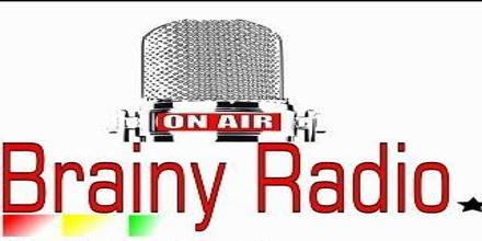 Rozgarnięty Radio