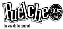 Puelche FM