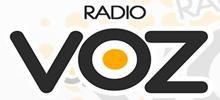Radio VOZ FM