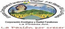 Farallones Digitalni FM Stereo