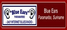 Blue Ears Blues Radio