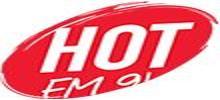 Hot FM 91.3