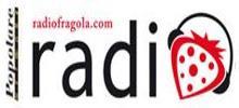 Radio de la fresa