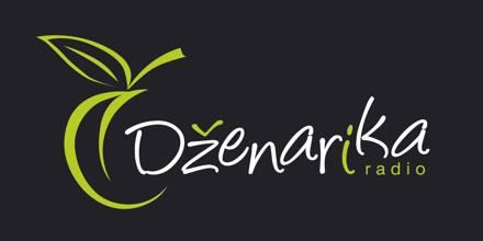 راديو Dzenarika