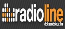 Radiolinie 99.1
