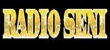 Radio Serbie Seni