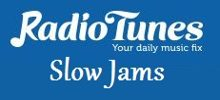 Radio Tunes Slow Jams
