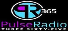 نبض راديو 365