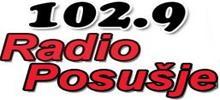 Радио Посусья