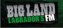 Grand terrain Labradors FM
