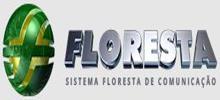 Système Forêt