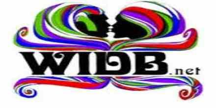 WIDB The Revolution
