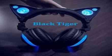 Black Tiger Recordings
