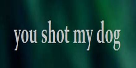 You Shot My Dog