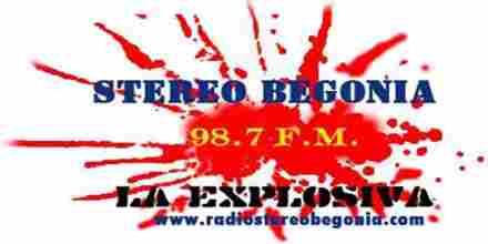 Radio Stereo Begonia