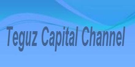 Teguz Capital Channel