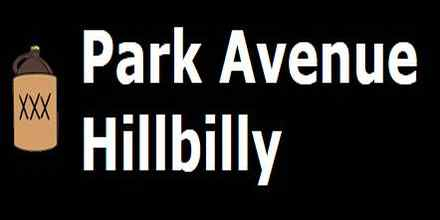 The Park Avenue Hillbilly