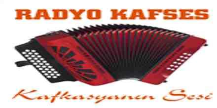 Radyo Kafses