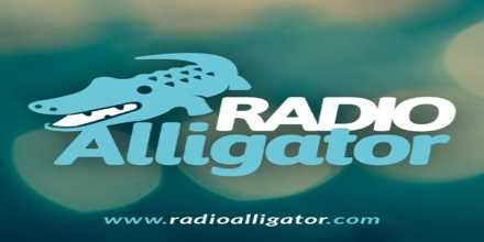 Radio Alligator